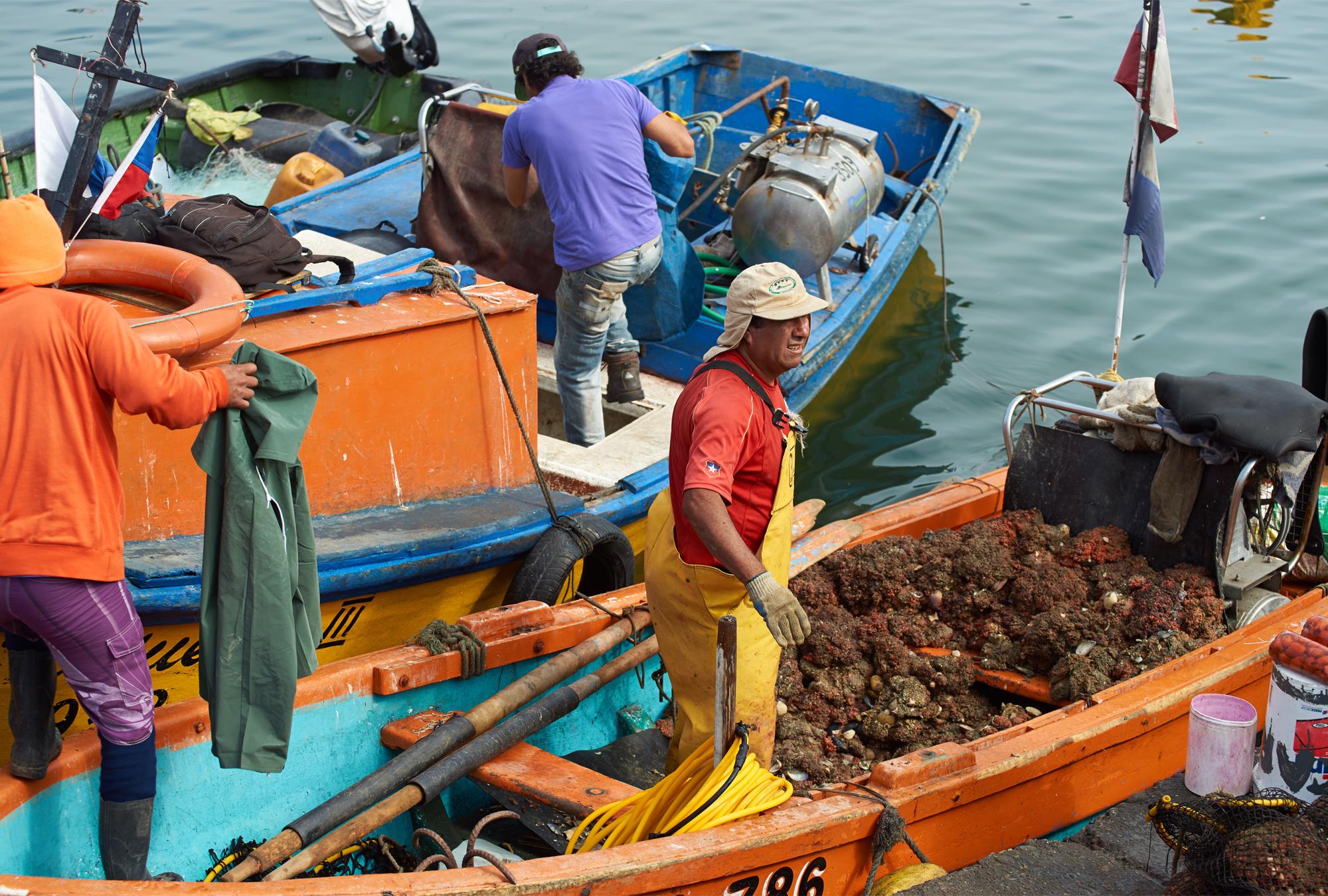 Fishermen in boats.