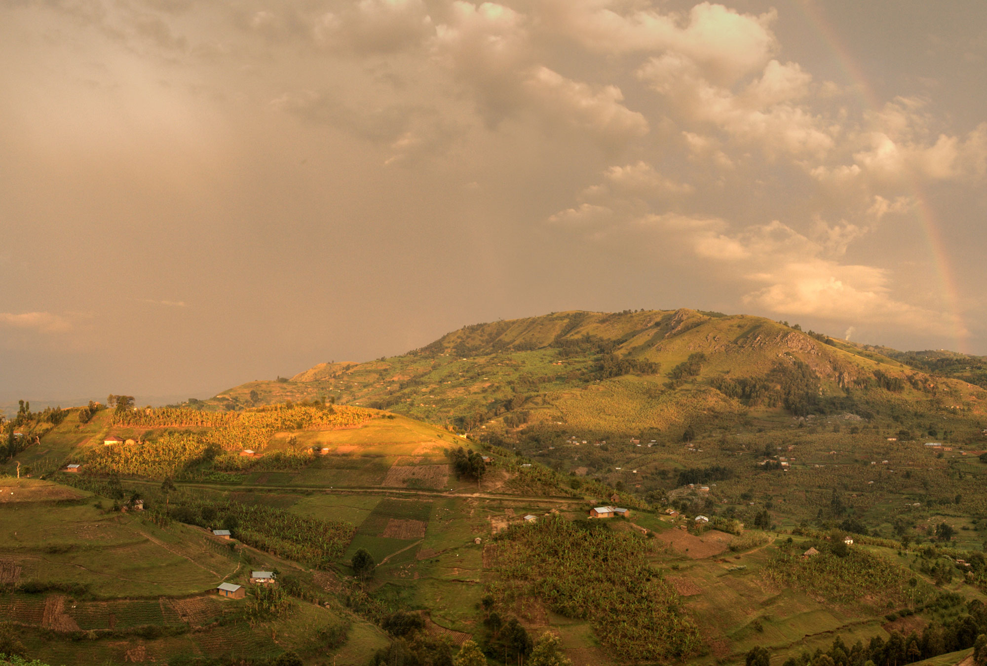A sloping landscape in western Uganda