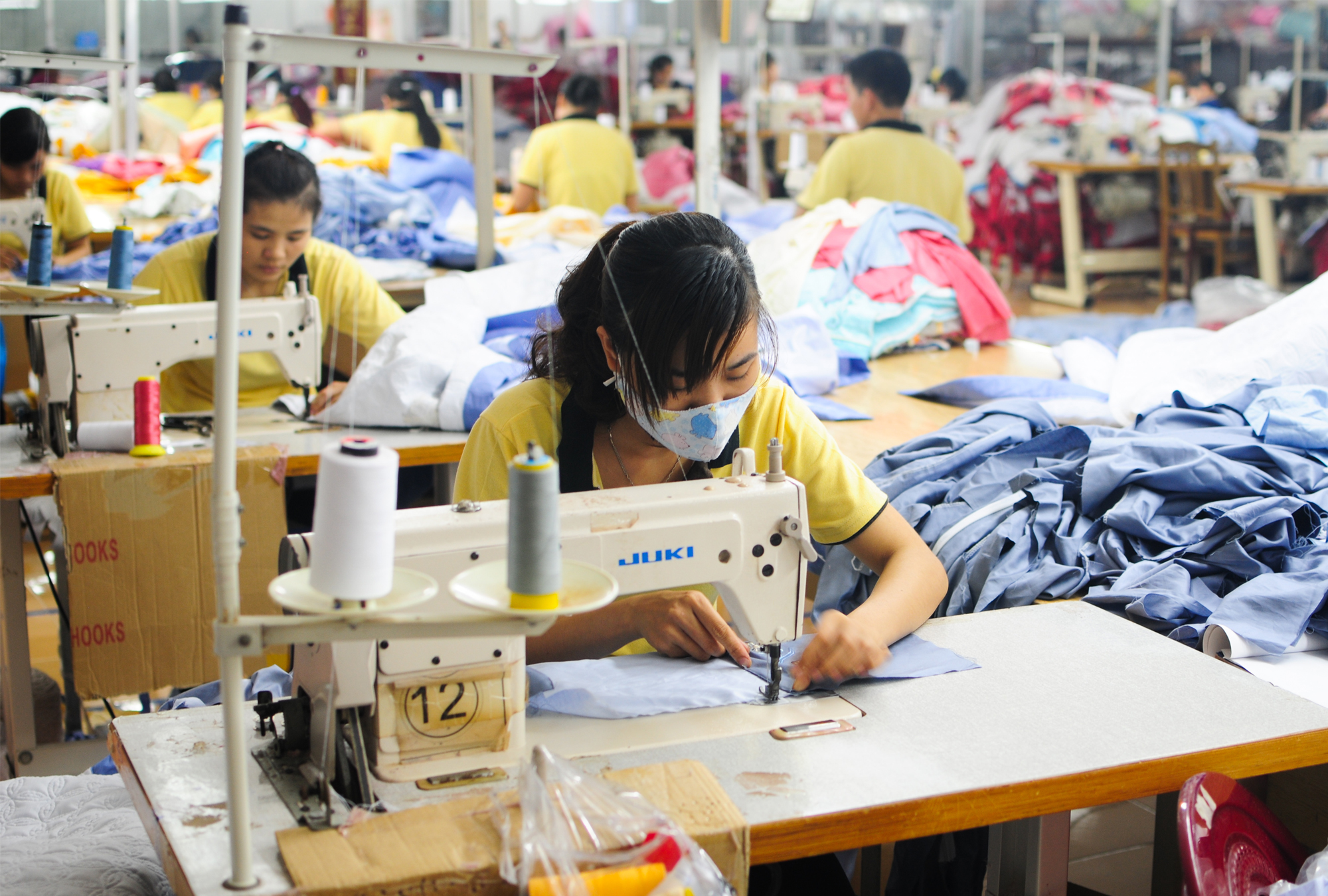 Participation and Regulatory Compliance Amongst Firms in Vietnam