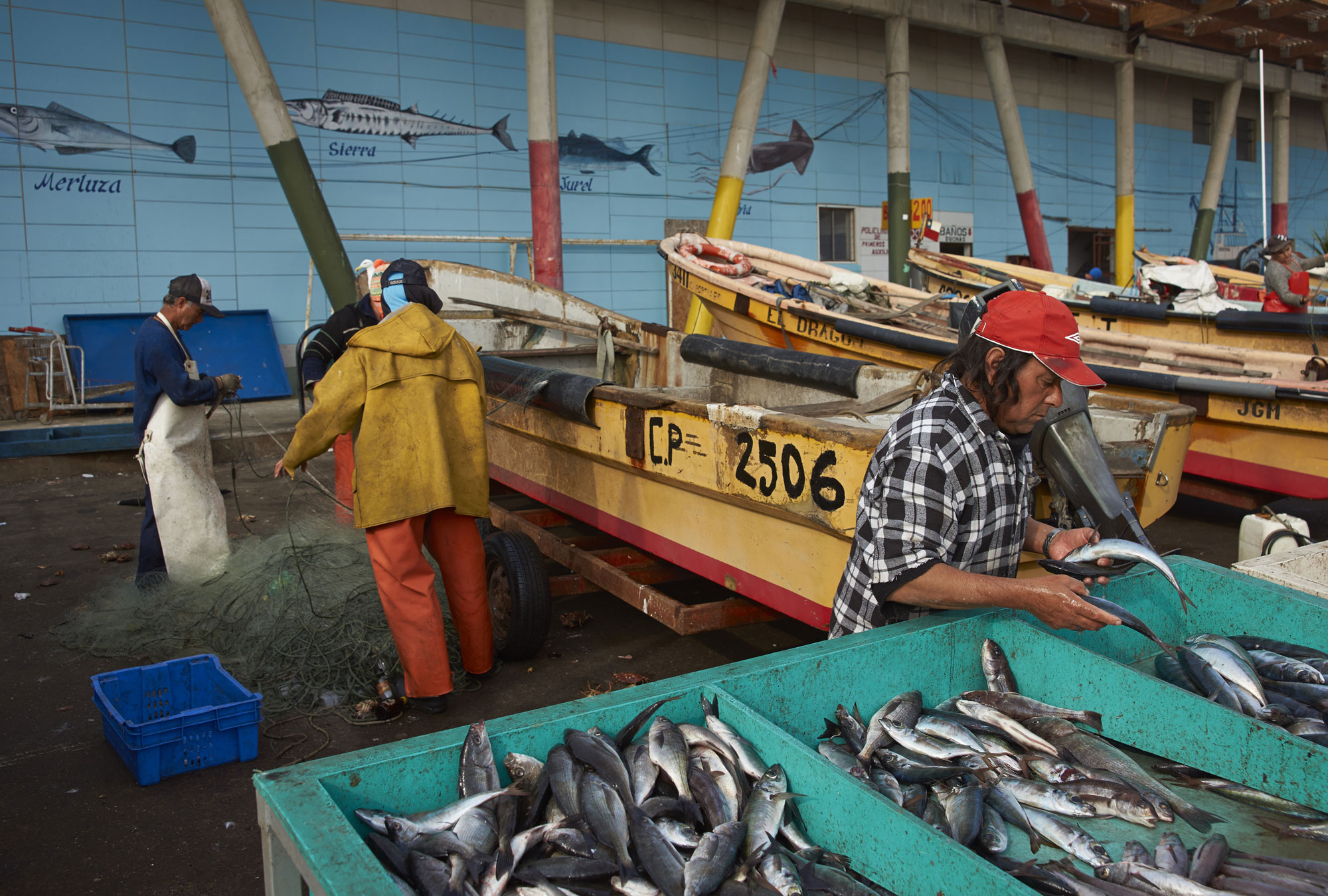 Fishermen in Chile on the docks