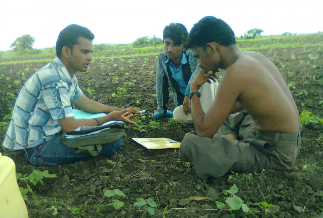 Farmers consider their options in Gujarat, India