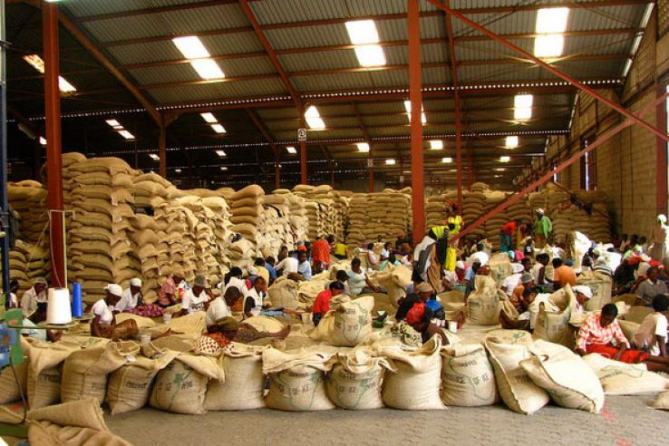 e-warehousing for smallholder farmers in Kenya