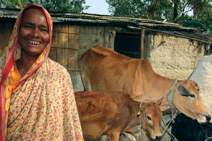Smiling woman in a sari with two cows and a goat