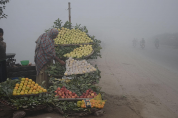 A person is standing at the side of the road behind a cart of fruit, while a cloud of smog obscures the background.